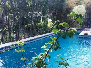 Bright Villa with Internet Access and A/C - Markopoulo Mesogeas vacation rentals