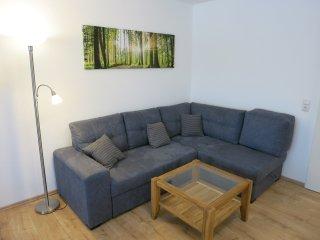 Ferienwohnung Lieblingsplatz - Spitzen Wohnung im Harz -  WLAN kostenlos - Hahnenklee-Bockswiese vacation rentals
