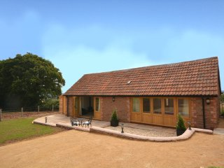 Nice House with Internet Access and Hot Tub - North Petherton vacation rentals
