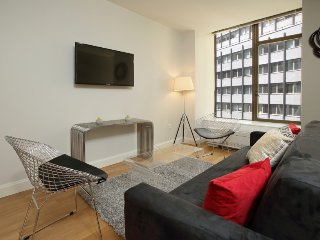 LUXURY-NEW! 1 BR FINANCIAL DISTRICT- SICK DEAL!!!  5188 - New York City vacation rentals