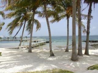 Regattas 205 Condo - Marsh Harbour vacation rentals