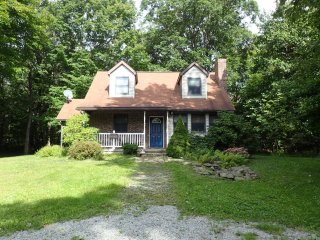Perfect House with Deck and Television - Jones Mills vacation rentals