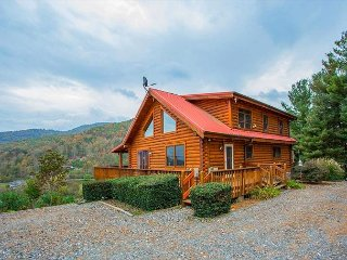 3 Bedroom 2.5 Bath  between Wolf Laurel and Cataloochee Ski Resorts - Leicester vacation rentals