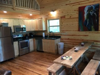 Get away from it all at The Plains Buffalo Cabin! New in April 2017! - Jasper vacation rentals