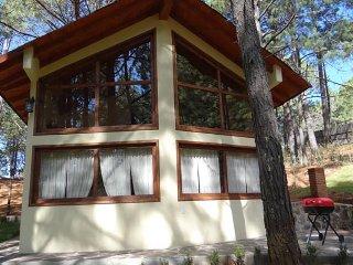 Cabaña en el bosque con 3 Recamaras - Mazamitla vacation rentals