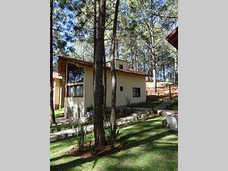 Cabaña con 3 Recamaras en el bosque - Mazamitla vacation rentals