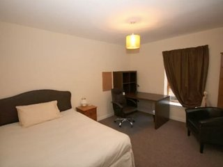Spacious 4 bedroom City Centre Flat. Free Parking! 150m2 - Dundee vacation rentals