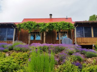 Lavender House - An off-grid nature retreat near Salmon Arm - Salmon Arm vacation rentals