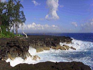 Hale Manu of Kaloli Point - Nature Lovers Paradise - Keaau vacation rentals