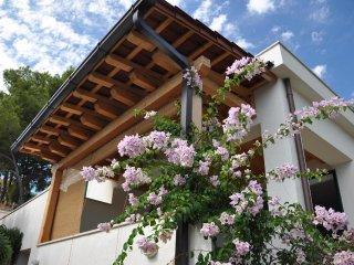 Charming 3 bedroom House in Milna - Milna vacation rentals
