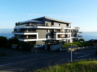 appartement  65 m2 2 à 6 personnes vue lac - Neuvecelle vacation rentals