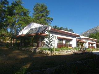 Perfect 1 bedroom Yesiluzumlu House with Internet Access - Yesiluzumlu vacation rentals
