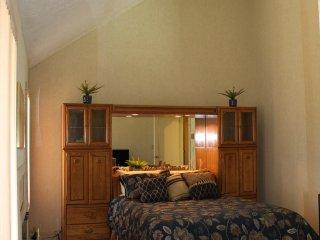 Classic Pocono Mountain Townhouse 5 min drive to Kalahari, 10 min. to Camelback - Pocono Pines vacation rentals