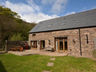 4 bedroom House with Internet Access in Cwmdu - Cwmdu vacation rentals