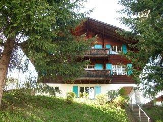 3 bedroom Apartment in Lenk, Bernese Oberland, Switzerland : ref 2380119 - Lausanne vacation rentals