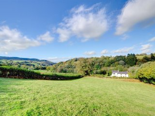 Charming 3 bedroom Cottage in Llangadog - Llangadog vacation rentals