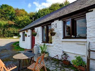 2 bedroom Cottage with Washing Machine in Llanwrda - Llanwrda vacation rentals