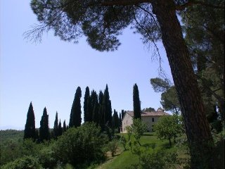 7 bedroom Villa in Siena, Tuscany, Italy : ref 2395105 - Lucignano d'Arbia vacation rentals