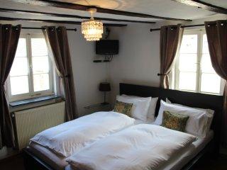 Apartment Silvaner - Zur Alten Weinkelter - Ellenz-Poltersdorf vacation rentals