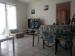 Appartement T2 tout comfort sur le bassin d'Arcachon - Le Teich vacation rentals