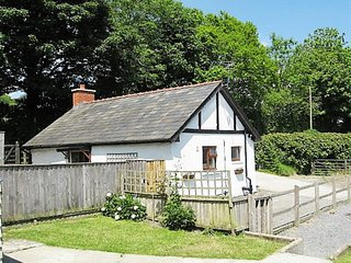 Charming Country Cottage in rural West Wales - Caio vacation rentals