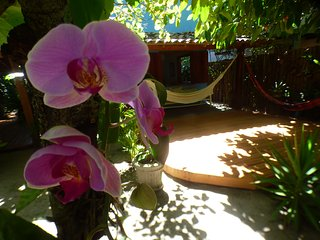 Casa charmosa a 100 metros da praia - Caraiva vacation rentals