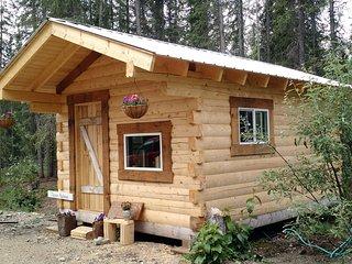 Blackburn Cabins: Lawrence Barrett Cabin - McCarthy vacation rentals