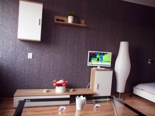 Nice Condo with Television and Central Heating - Anyksciai vacation rentals