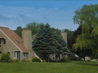 MTD - Tamarack - Mirror Lake Resort - Large 1 Bedroom with Loft - Sleeps 6 - Lake Delton vacation rentals