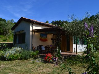 """""""POGGIO""""  ON THE HILL CLOSE TO THE SEA -  The house is set in a 5000 sq.mt olive - Giucano vacation rentals"""