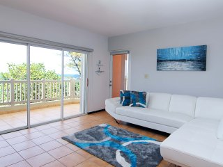 #7 LuxurIous 3Br/2Ba Beachfront Apartment at Isabela Puerto Rico - Isabela vacation rentals