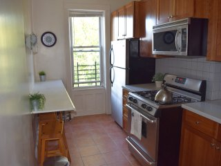 Sunny and Large 3 Bedroom Apartment Located in Historic Ridgewood Queens - Ridgewood vacation rentals