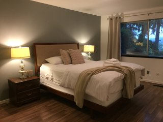 Quiet Midcentury Modern Home-Lake Views & parking - Renton vacation rentals
