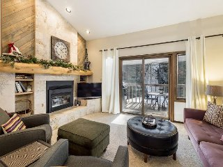 Modern Winterwood Retreat in Steamboat, Half-Mile to Thunderhead Ski Lift - Steamboat Springs vacation rentals
