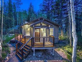 3BD, 2BA Homewood Cabin Among the Pines - Upscale Vibe & Newly Renovated - Homewood vacation rentals