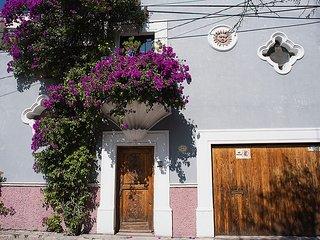 Casa Vista Guadiana - San Miguel de Allende vacation rentals