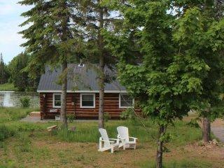 Algonquin Moose Lodge's-Barbie's Bunkie - South River vacation rentals