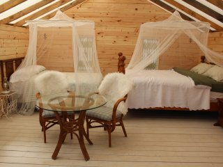 A wilderness glamping experience - Algonquin Park vacation rentals