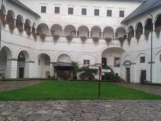 apartamento in bellissimo antico castello con super restorante italiano - Strassburg vacation rentals