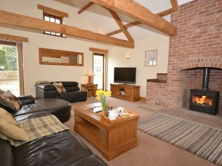 Convenient Barn with Internet Access and Game Room - Berkeley vacation rentals