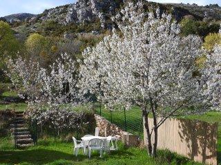 En pleine nature, indépendant avec jardin clôturé - Caussols vacation rentals