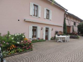 """Gîte """"Au jardin Fleuri"""" - Blotzheim vacation rentals"""