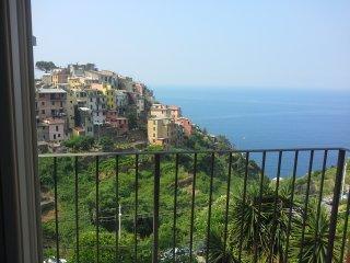 1 bedroom Condo with A/C in Corniglia - Corniglia vacation rentals