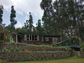 Jacaranda villa ! Beyond imagination - Kodaikanal vacation rentals