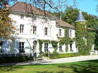 Château des Ayes |Vacances|Mariages|Séminaires | Gîte - Saint-Etienne-de-Saint-Geoirs vacation rentals