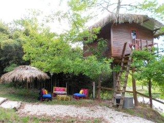 The Tree House - Casa da Arvore - Aveiro vacation rentals
