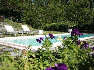 Il Castagno Country House Versilia - Camaiore vacation rentals
