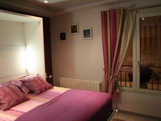 Les Orchidees Appartement 4 Etoiles ! - Caudebec-en-Caux vacation rentals