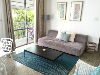 Two Bedroom steps from beach, parking fcfs - San Juan vacation rentals