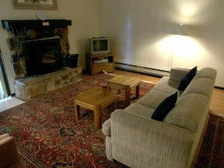 2 bedroom Apartment with Internet Access in Incline Village - Incline Village vacation rentals